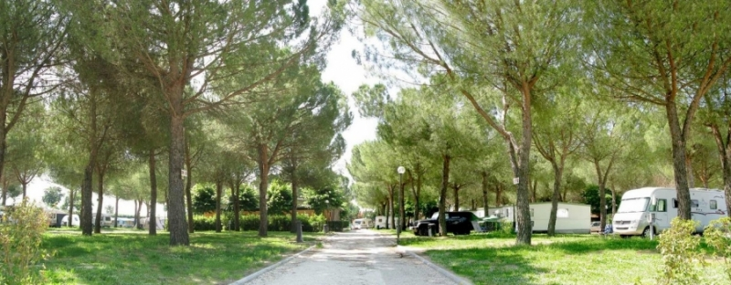 Camping VILLAGE ASSISI in Assisi (Perugia)