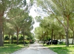 Camping VILLAGE ASSISI ad Assisi