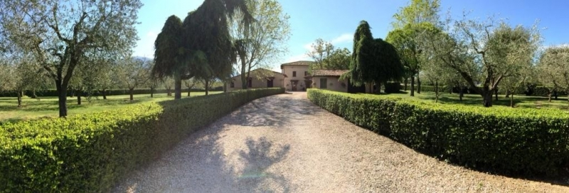 House for Holidays PERFETTA LETIZIA in Assisi (Perugia)